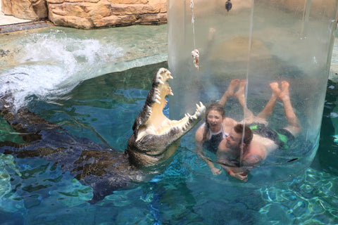 Swimming with Crocodiles in Darwin