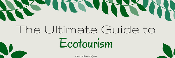 The ultimate guide to ecotourism