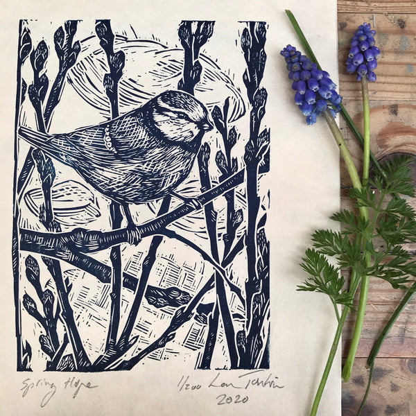 Blue tit print 'Spring Hope' by Lou Tonkin