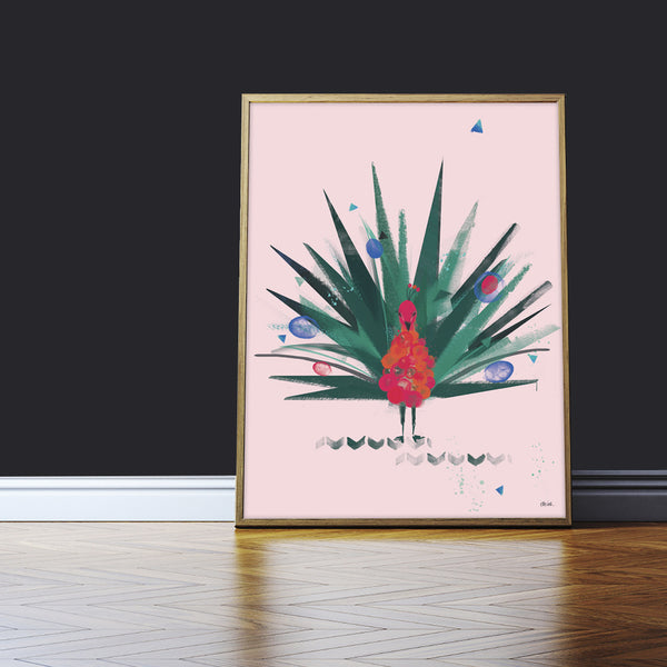 Mr Peacock | Pink