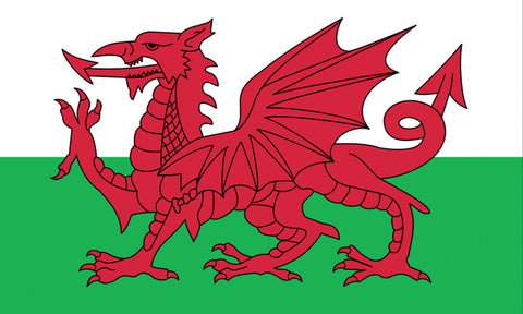 Premium Welsh Dragon Flag - Wind Creations