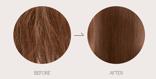 DAMAGED HAIR THERAPY TREATMENT