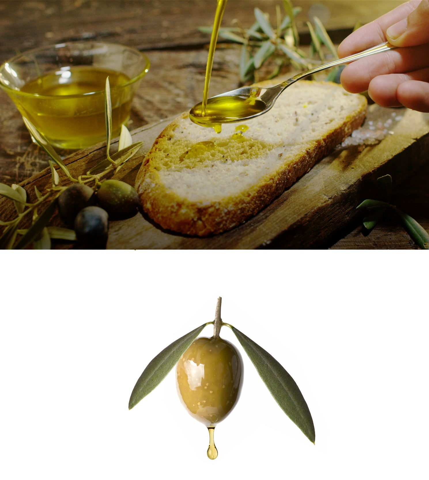 High Polyphenol and Squalene Olive Oil