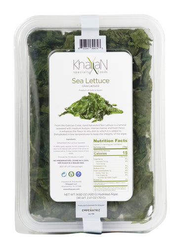 Sea Lettuce is a sea weed (algae) from Galicia Spain nutrients minerals