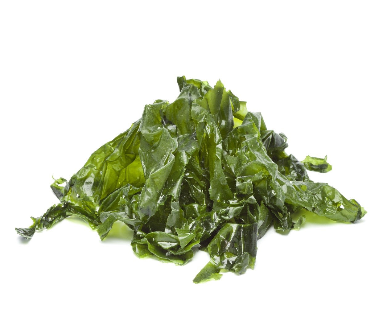 Best Seaweed to eat