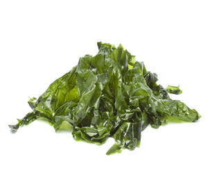 Lettuce of the Sea <br> Seaweed <br> <br> <br>