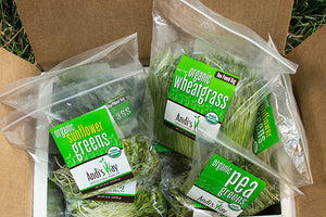 Load image into Gallery viewer, 15 lb Large Bundle (5 lbs Wheatgrass, 5 lbs Sunflower Sprouts, 5 lbs Pea Sprouts) from Andisway