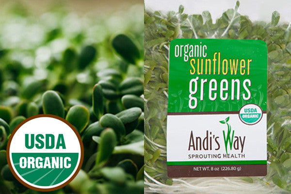 Fresh Organic Sunflower Greens (Sprouts) from Andisway.com