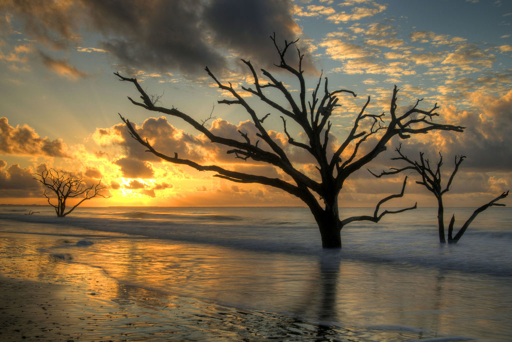 Photo Story: The Botany Bay Sunrise
