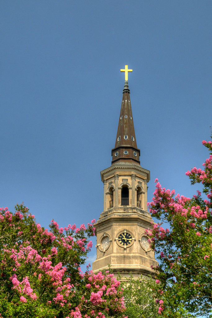 Church Tower & Pink Flowers