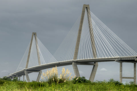 Ravenel on Gray Day
