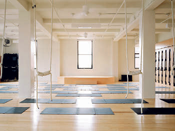 Iyengar Yoga Institution