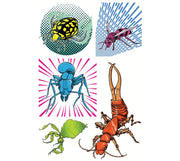 This mechanical collection of temporary tattoos are designed by Cartoonist Andre Martel. Includes five machines bugs such as a diving beetle, an ant, an earwig, a  hornet and a leaf insect.