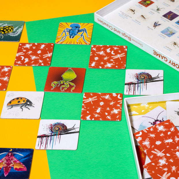 Memory Game: Discovering Bugs and Crawlies