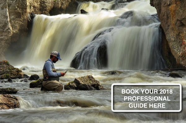 Book your Professional Guide Fly Fishing Trip Now For 2018