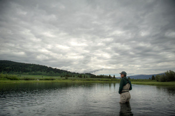 Madison River Professional Guide Trips - Book Now