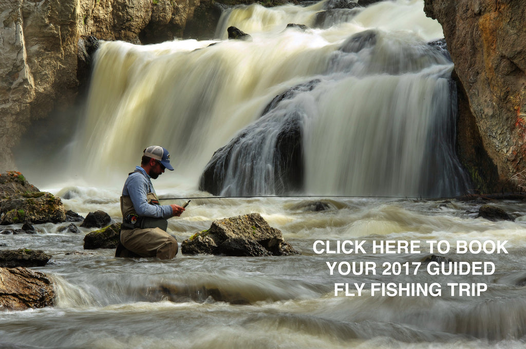 Book Your 2017 Guide Fly Fishing Trip