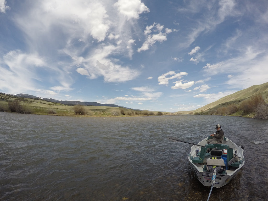 Madison River Fly Fishing Report 5/17/2016