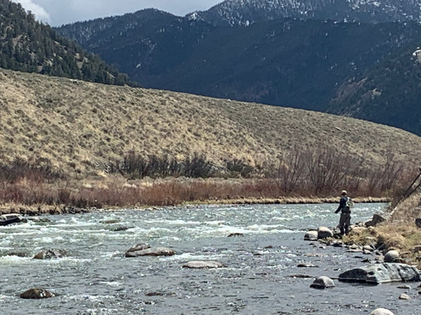 Madison River Outfitters Fishing Report 5/11/21