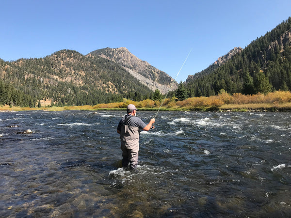 Madison River Outfitters Fishing Report 9/11/2018