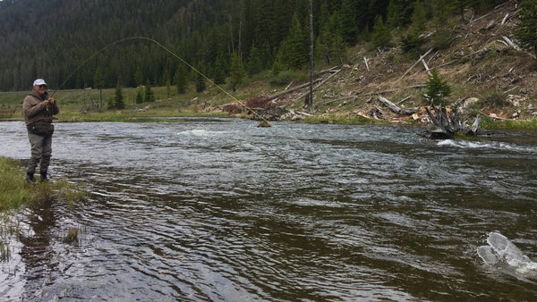 Madison River Outfitters Fly Fishing Report 5/29/2017