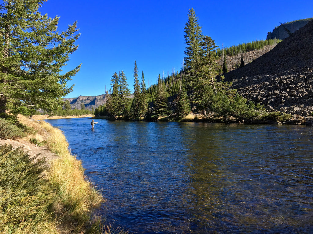 Madison River Outfitters Fishing Report