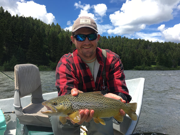 Madison River Outfitters Fishing Report 6/26/18