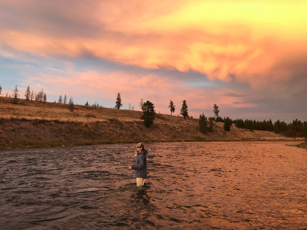 Madison River Outfitters Fishing Report 9/18/2017