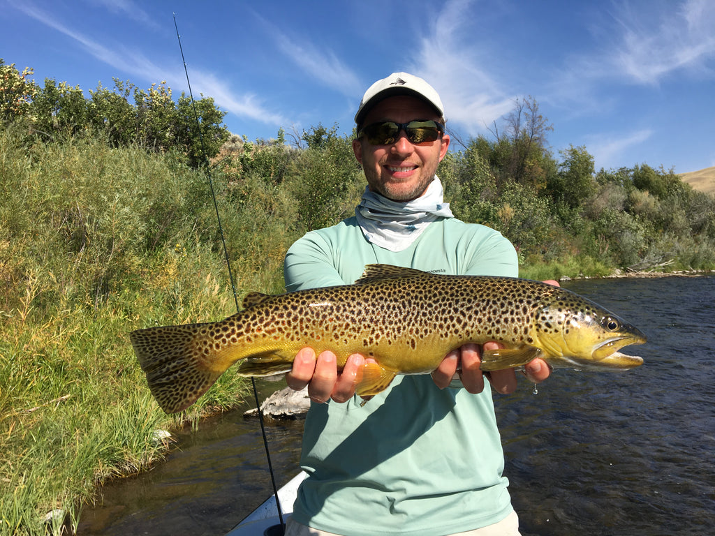 Madison River Outfitters Fishing Report 9/8/20