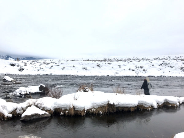 Midge Fly Fishing In the Winter on the Madison River