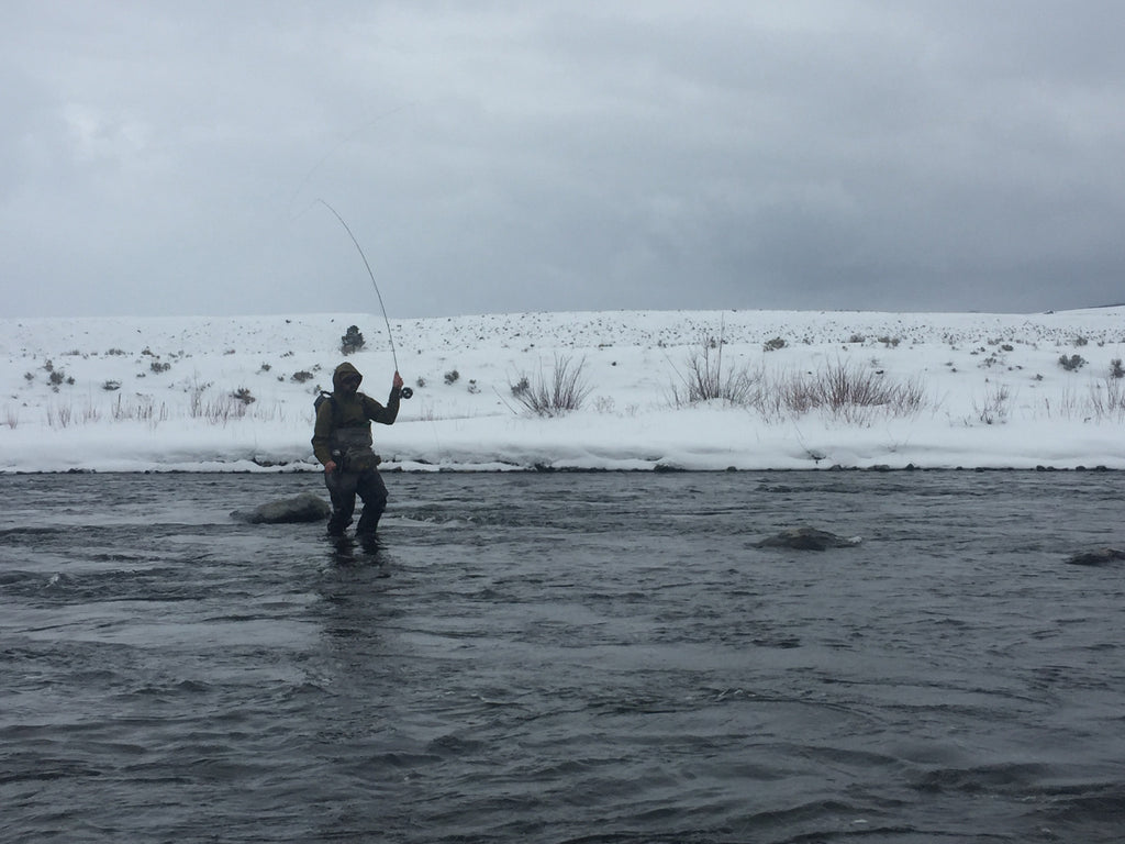 Madison River Fishing Report - 01/25/2017