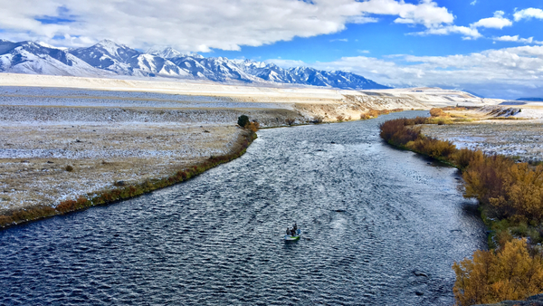 Madison River Outfitters Fishing Report 10/16/2018