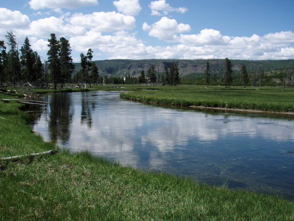 Tips for Fishing The Firehole River Opening Weekend