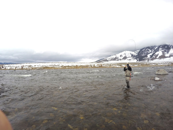 A Day of Winter Fly Fishing on The Upper Madison River