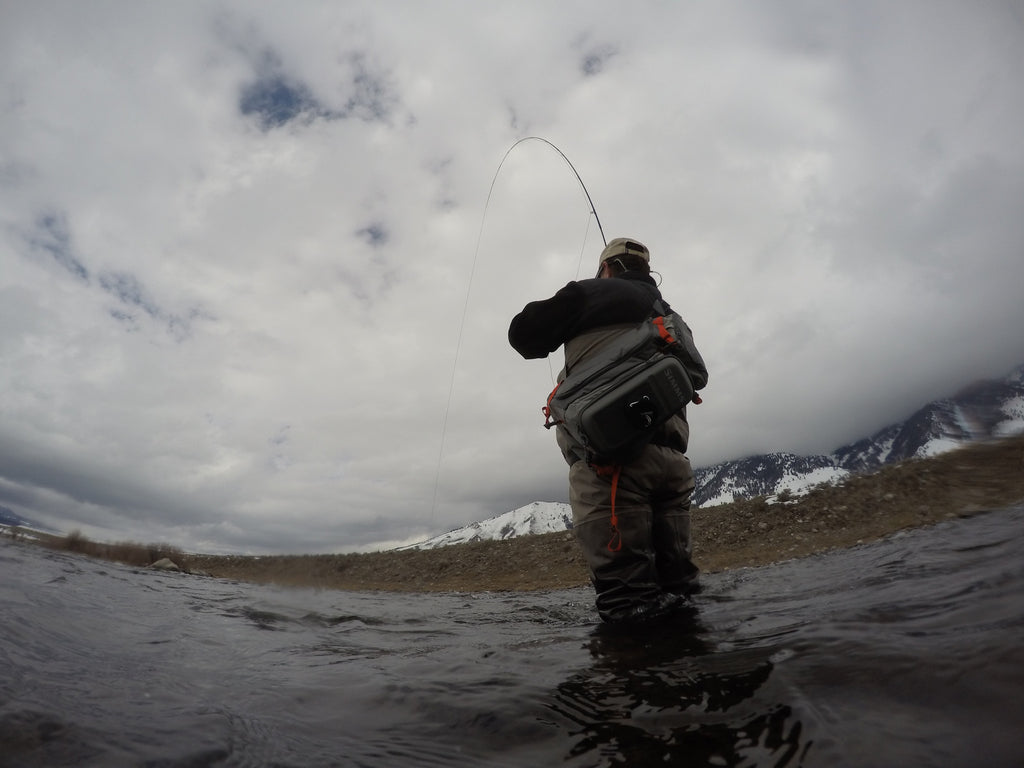 Montana Fly Fishing Report 3/29/2016