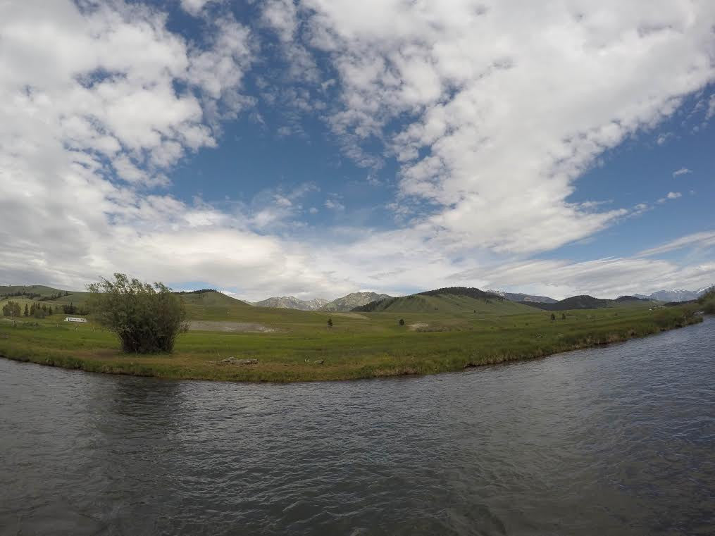 Madison River Fly Fishing Report 6/13/2016