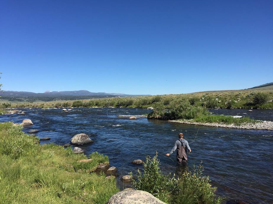 Madison River Fly Fishing Report 6/27/2016