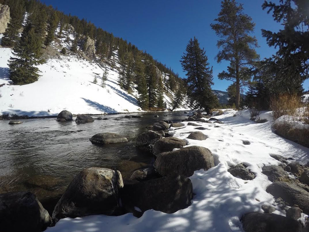 Montana Fly Fishing Report for 02/29/2016