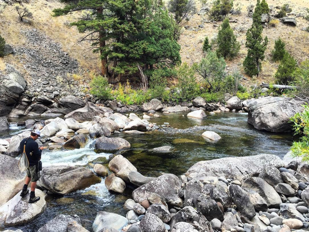 MRO Fly Fishing Report 9/21/2016