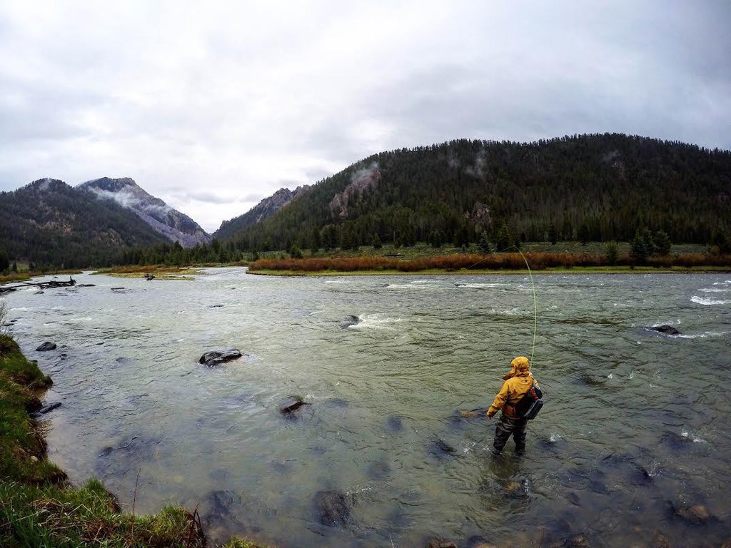 Madison River Fly Fishing Report 5/23/16