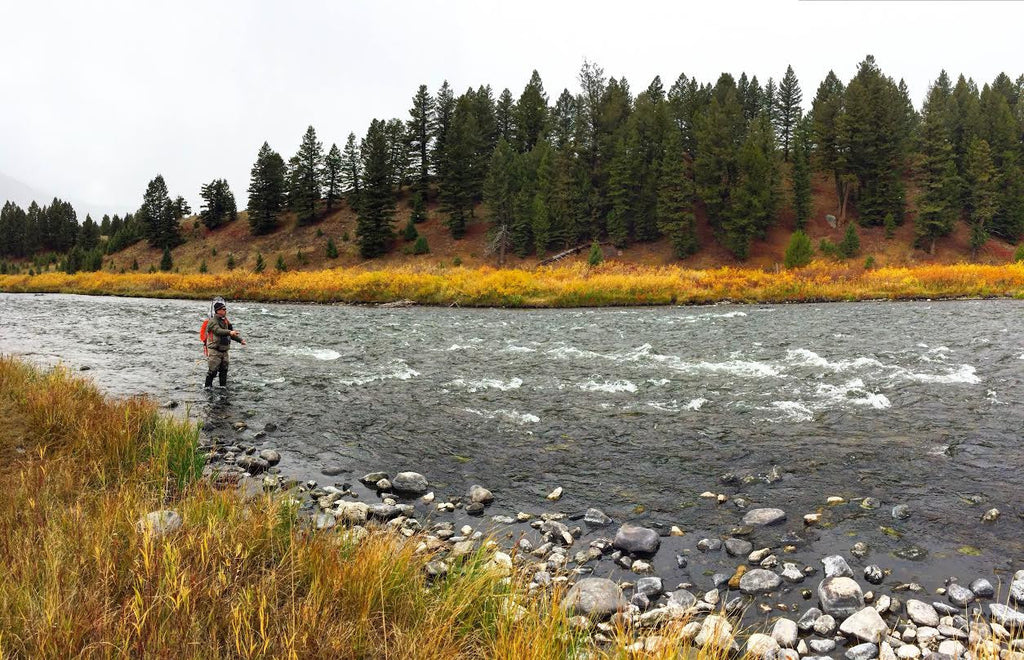 MRO Fly Fishing Report 10/19/2016
