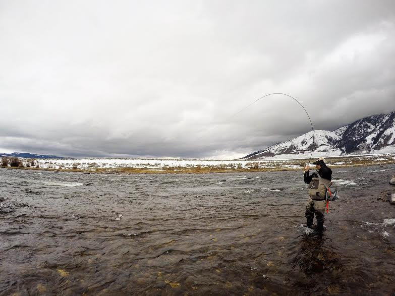 Montana Fly Fishing Report 3/20/16