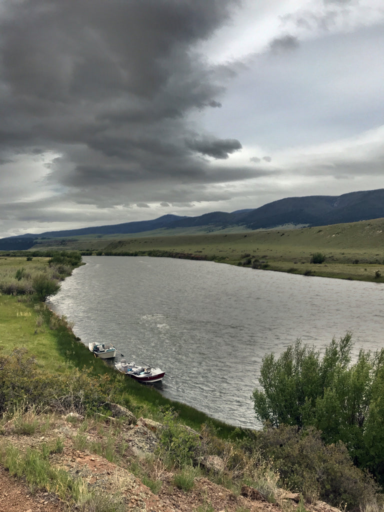 Madison River Outfitters Fishing Report 6/16/20