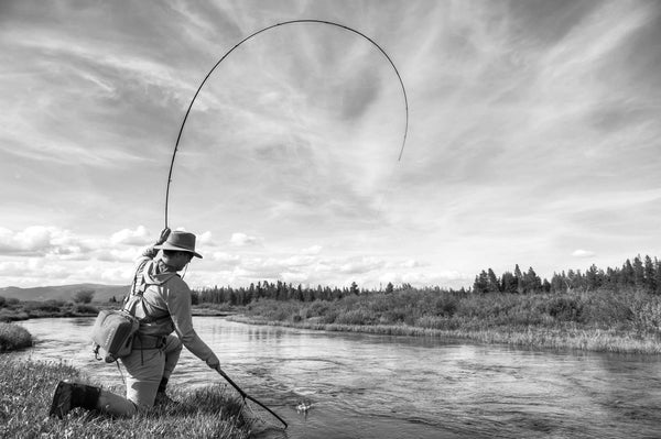 Madison River Outfitters Fly Fishing Report 6/6/2017