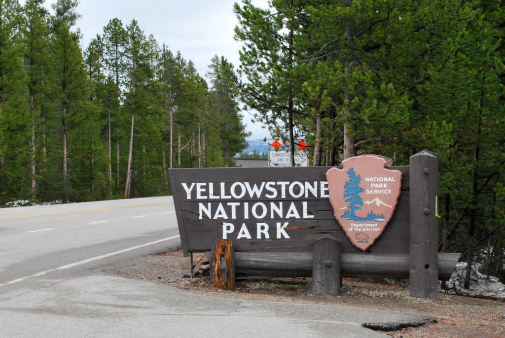 Montana Entrances to Yellowstone National Park Open June 1, 2020