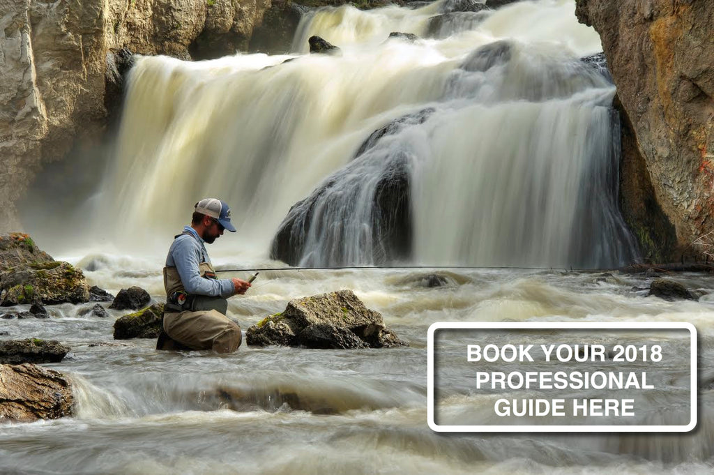 Professional Guide Fly Fishing Trip - Madison River - Montana
