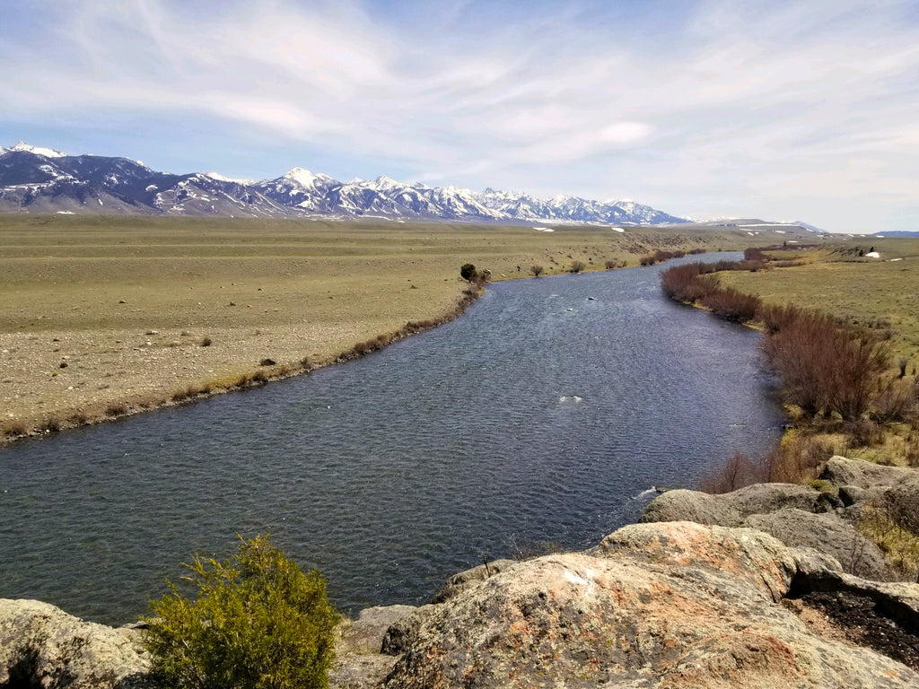 Madison River Outfitters - Fly Fishing Guides