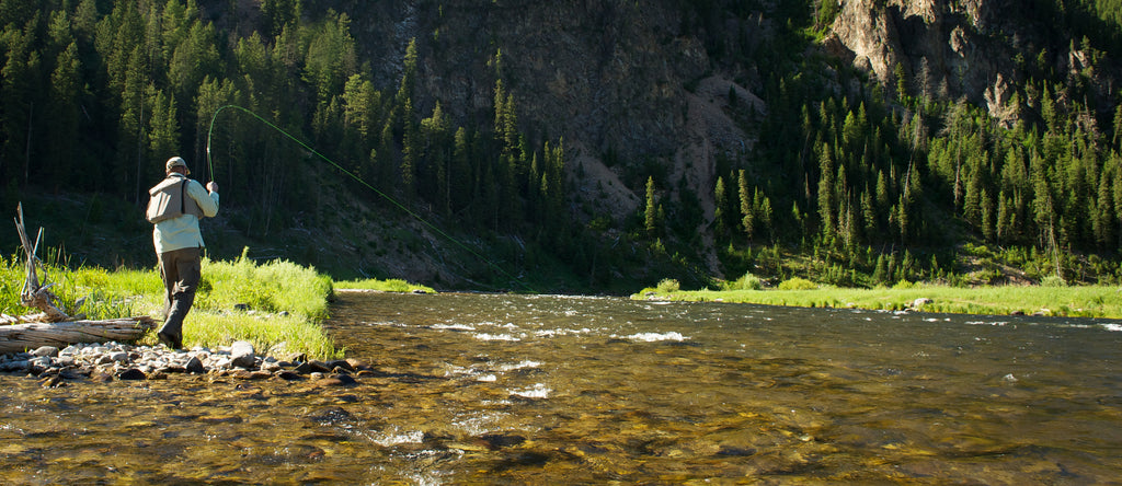 Instructional Guide Trips Madison River Montana