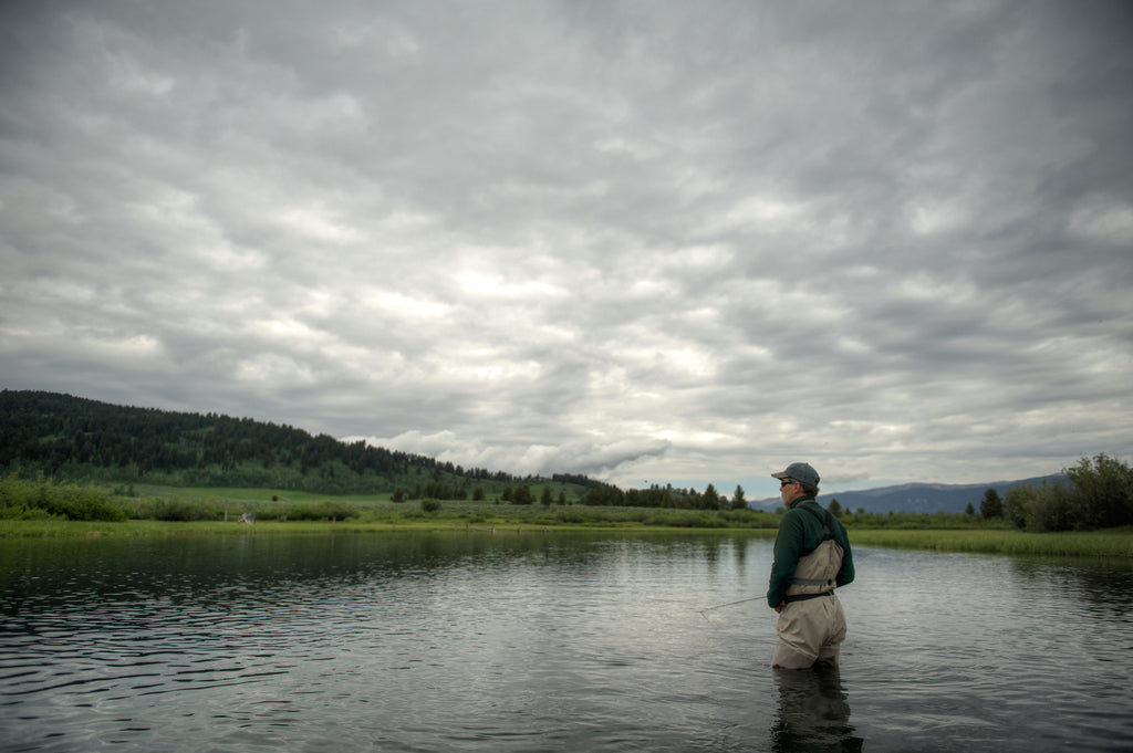 Madison River Fly Fishing Trips