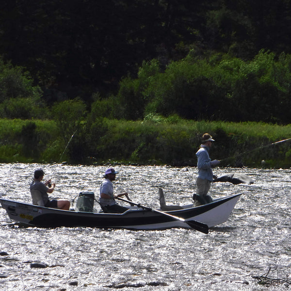 Madison River Float Fishing Trips